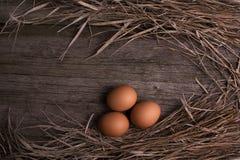 Hühnereien mit Stroh auf rustikalem hölzernem Hintergrund Lizenzfreies Stockfoto