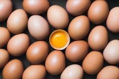 Hühnereien und Eigelb Lizenzfreies Stockfoto