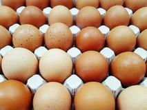 Hühnereier lizenzfreies stockfoto