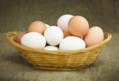 Hühnereier in einem Korb Stockfoto