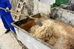 Hühnerfedern an einer Mülldeponie Lizenzfreie Stockbilder
