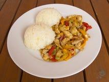 Hühnerfleisch mit Reis Stockbild