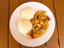 Hühnerfleisch mit Reis lizenzfreie stockfotos