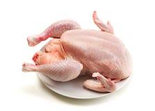 Hühnerisolat auf Weiß Stockfoto