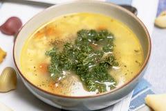 Hühnernudelsuppe mit Karotten und Petersilie Stockfotos