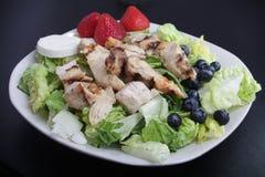 Hühnerobstsalat Stockbild