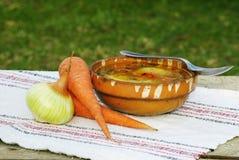 Hühnersuppe mit Karotten Lizenzfreies Stockfoto