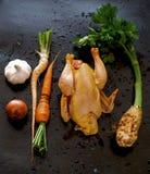 Hühnersuppebestandteile stockfotografie