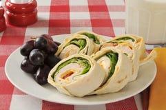 Hühnerverpackungssandwich und -trauben Stockbild