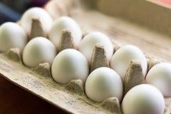 Hühnerweiße eier in einer Pappschachtel Stockfotos