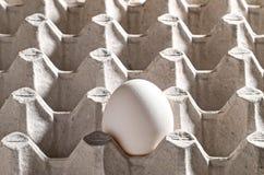 Hühnerweißes ei in einer Kassette Stockfoto
