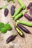 Hülsen von grünen und purpurroten Erbsen auf einer Holzoberfläche stockbild