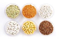 Hülsenfrüchte und Reis Stockbild