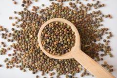 Hülsenfrucht Roveja-Samen auf einem hölzernen Löffel Lizenzfreie Stockfotos