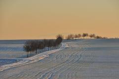 Hüpstedt, Winter, Landscape Royalty Free Stock Photo