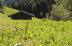 Hütte Lizenzfreies Stockbild