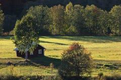 Hütte auf Wiese Lizenzfreie Stockfotos
