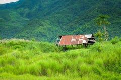 Hütte aufgestellt in einem Wald stockbild