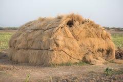 Hütte des Grases Stockbild