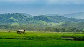 Hütte im Ackerland von Leuten in der Landschaft Lizenzfreies Stockfoto