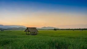Hütte im Ackerland von Leuten in der Landschaft Thailand Lizenzfreie Stockbilder