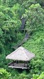 Hütte im Dschungel Lizenzfreies Stockbild