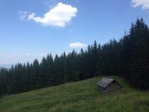 Hütte im Wald Stockfotos