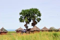 Hütten im Dorf in Uganda, Afrika Stockbild
