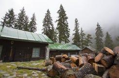 Hütten im Wald Stockbild