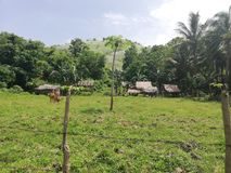 Hütten von Mangyan-Stamm in den Hügeln von Mindoro, Philippinen lizenzfreies stockfoto