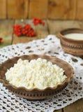 Hüttenkäse und Milch in einem Tongefäß Lizenzfreies Stockbild
