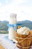 Hüttenkäse und Milchflasche auf Naturhintergrund Stockbild