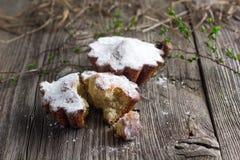 Hüttenkäsekleine kuchen Lizenzfreies Stockfoto