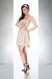 härlig gullig klänningkvinna Royaltyfri Foto