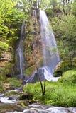härlig skogvattenfall Royaltyfria Bilder
