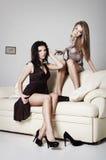 härliga lyxiga kvinnor för stående två Fotografering för Bildbyråer