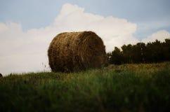 H?baler i en ?ng Sugrör och baler på fältet Naturligt landskap f?r bygd arkivfoton