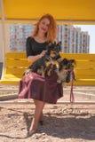 H?bsche gl?ckliche redheaded Frau mit zwei wenigen Hunden auf der gelben Sommerbank stockfotos