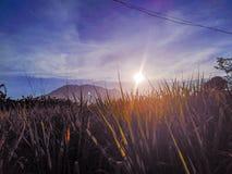 9h du matin dans la ferme de Pili Cam Sur images stock