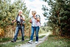 H?ga par som fotvandrar i skogen royaltyfri foto