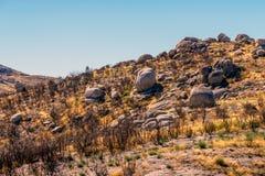 H?gel mit Stein in der Gebirgsregion in Portugal Gebrannte B?ume nach einem Feuer in den Bergen ?kologische Katastrophe lizenzfreie stockfotos