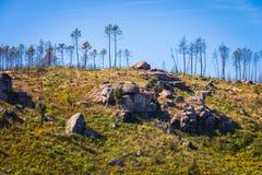 H?gel mit Stein in der Gebirgsregion in Portugal Gebrannte B?ume nach einem Feuer in den Bergen ?kologische Katastrophe lizenzfreies stockfoto