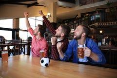 H?llande ?gonen p? fotboll i st?ng Lyckliga v?nner som dricker ?l och hurrar f?r det favorit- laget som firar seger royaltyfria bilder
