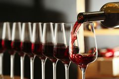 H?llande vin fr?n flaskan in i exponeringsglas i k?llare arkivbilder