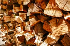 H?lzerne Beschaffenheit des geschnittenen Baumstammes stockfotografie