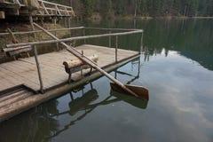 H?lzernes selbst gemachtes Ruder, die das Wasser im See rudern stockfotografie