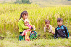 H ` mong 2016年10月16日的少数族裔孩子在Laocai,越南 库存照片