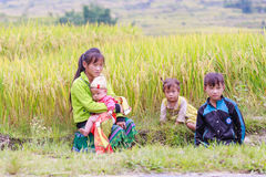 H`mong ethnic minority children on October 16, 2016 in Laocai, Vietnam Stock Photography