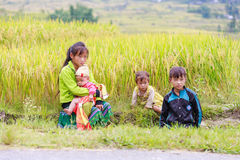 H`mong ethnic minority children on October 16, 2016 in Laocai, Vietnam Stock Photo