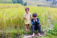 H ` mong mniejszości etnicznej dzieci na Październiku 16, 2016 w Laocai, Wietnam Obraz Royalty Free